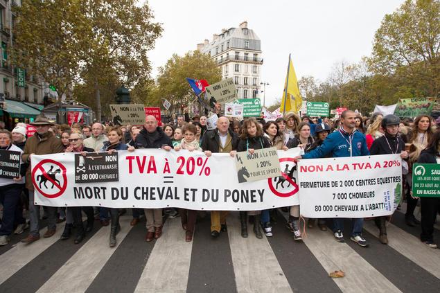 http://www.avoirsoncheval.fr/wp-content/uploads/2017/03/filière-équitation-manifestation.jpg