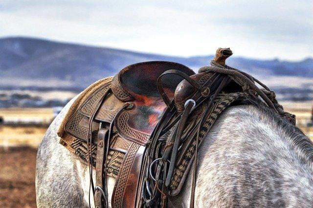 Materiel d'equitation